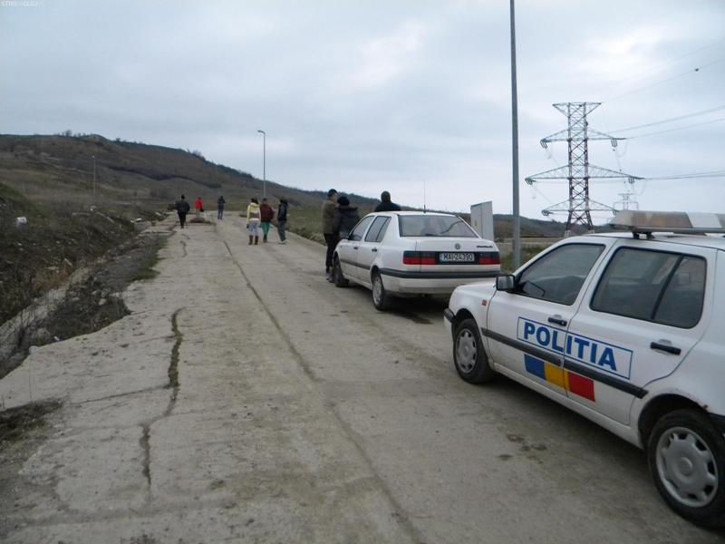 Constructorul unui cartier rezidențial din Cluj-Napoca a omorât cu JEEP – ul mai multe OI –  FOTO
