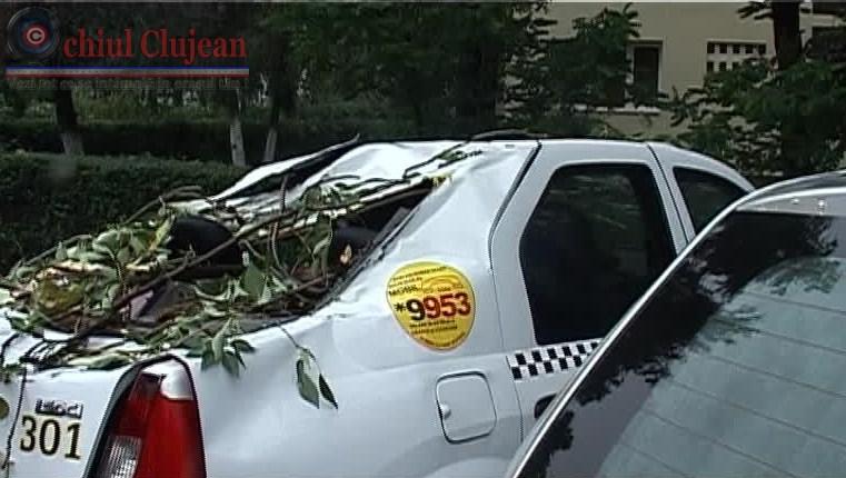 Crengile unui copac au cazut peste un taxi pe strada Septimiu Albinii FOTO-VIDEO