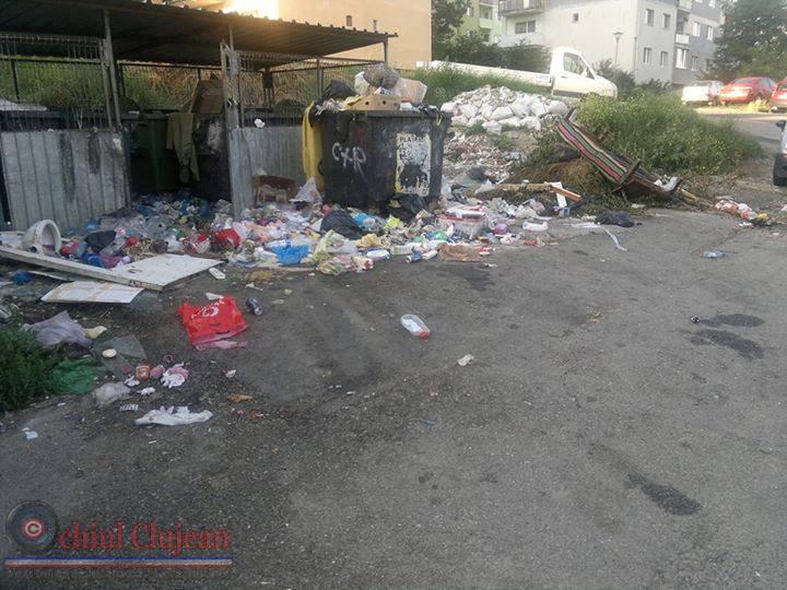 Colectarea si depozitarea gunoiului menajer este o problema la Dej? FOTO