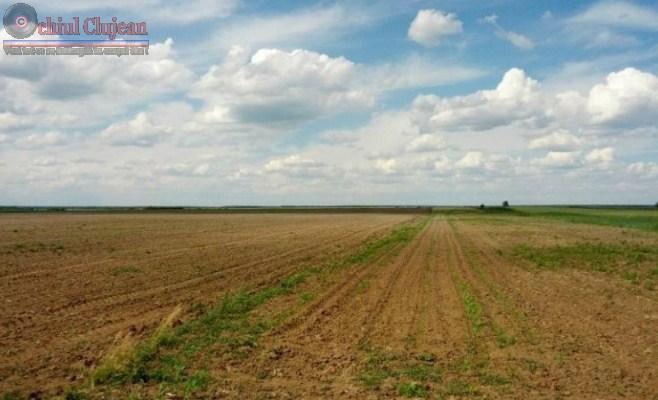 Fermieri cercetați pentru obținere ilegală de subvenții
