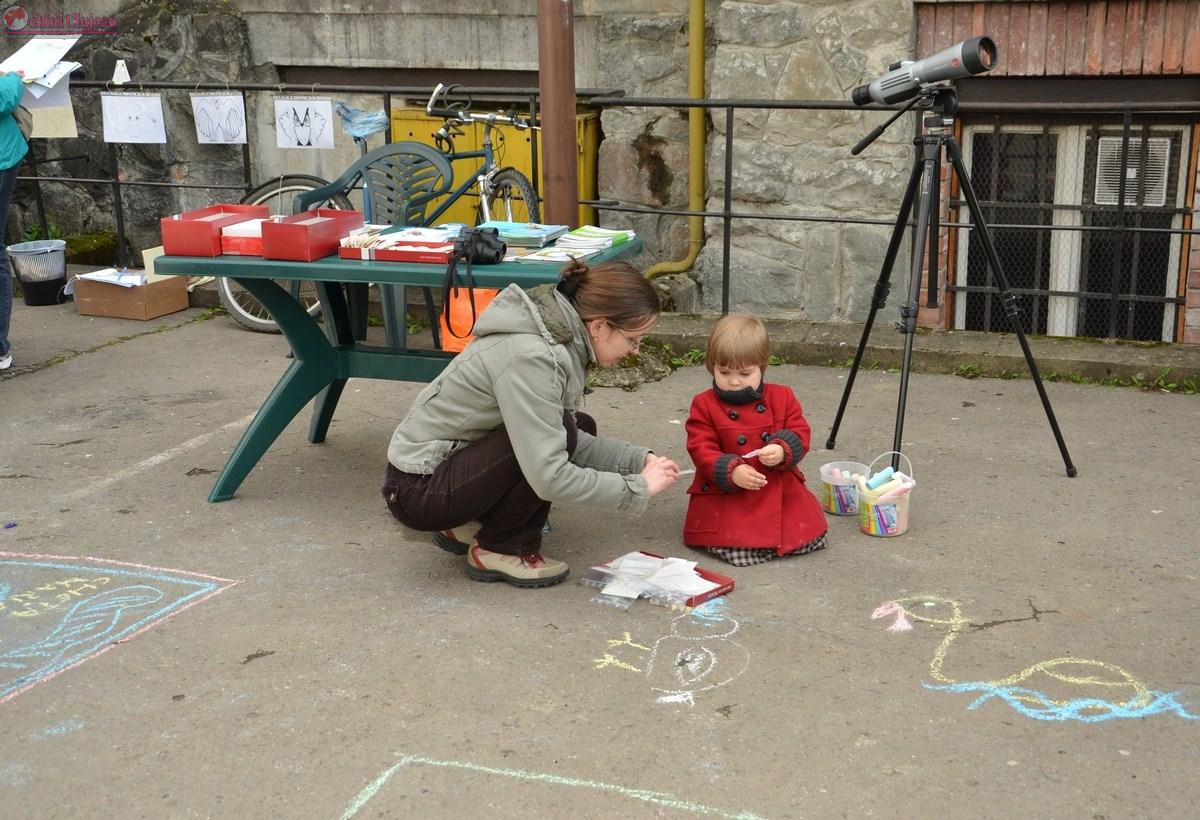 Ziua Pasarilor la Cluj: activitati ornitologice pentru copii si tur de observare a pasarilor