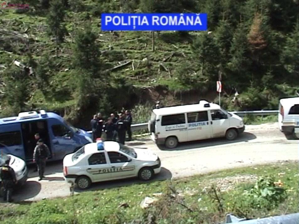 Razie la Măguri Răcătău! Polițistii clujeni au confiscat material lemnos de 11.000 de lei