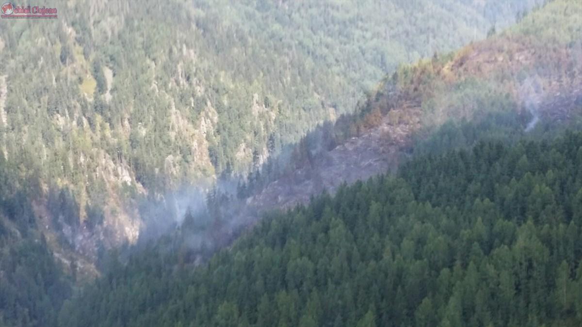 Incendiu în Măguri Răcătău.  Peste 6 hectare de pădure au ars VIDEO