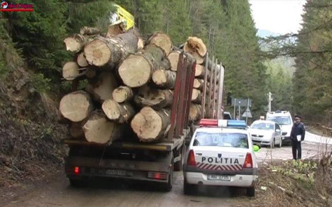 Material lemnos de 4.800 de lei, confiscat de polițiștii clujeni