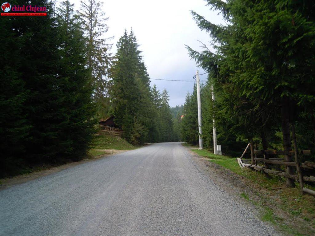 Pe drumul judeţean DJ 107R Băişoara – staţiunea Muntele Băişorii se trece la lucrări de asfaltare, după ce s-au executat deja şase kilometri de tratament dublu bituminos FOTO