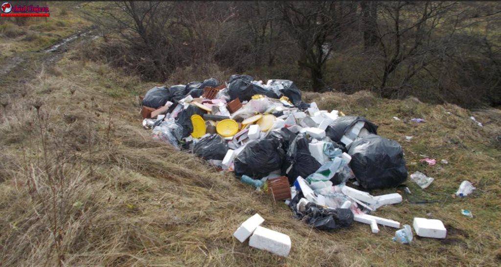 Amendă de 4.500 de lei pentru depozitare ilegală de deșeuri în pădurea Făget FOTO