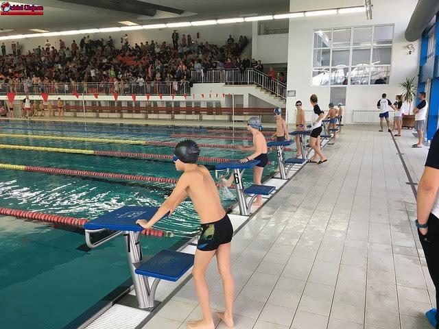 Elevii clujeni luptă împotriva sedentarismului prin înot. Care sunt câștigătorii concursului Transylvania College Swimming Cup