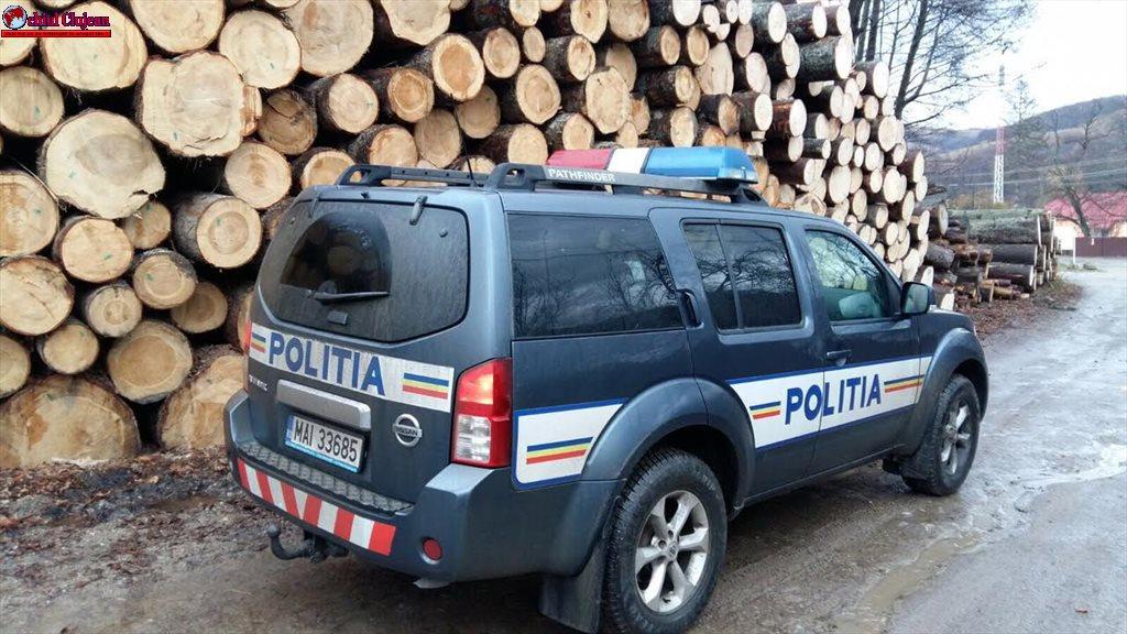 Cluj: Material lemnos confiscat de polițiști