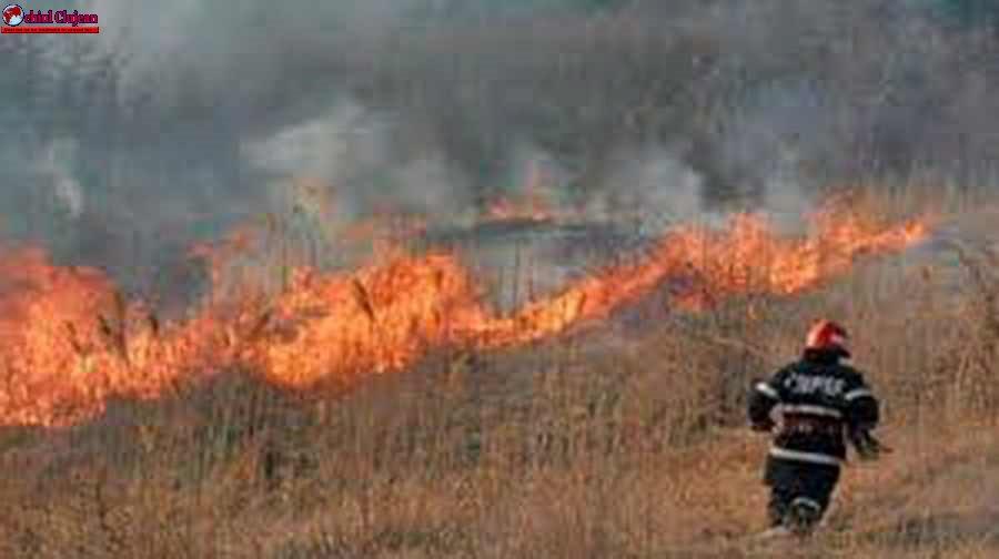 ISU Cluj: Măsuri pentru prevenirea incendiilor de vegetație uscată