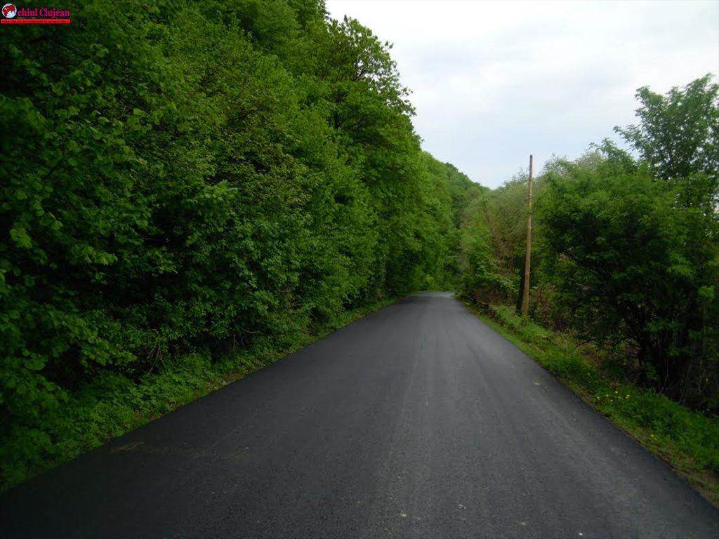 Au fost finalizate lucrările de asfaltare pe drumul judeţean DJ 109E Viile Dejului – Cetan – Vad FOTO