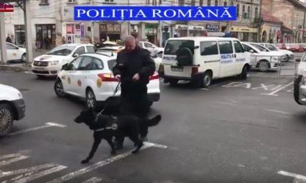 Razie de amploare în zona piețelor din Cluj-Napoca VIDEO