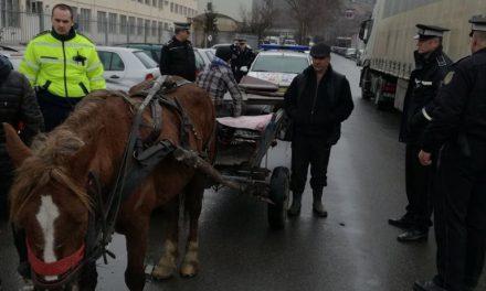 Cluj: Căruță confiscată pe Bulevardul Muncii FOTO