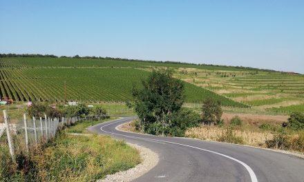 Lucrări de marcaje rutiere pe drumul judeţean 161B Turda – Ploscoş FOTO