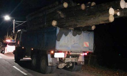 16 metri cubi de material lemnos confiscat de polițiștii clujeni FOTO-VIDEO