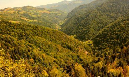 """""""Ziua Muntelui"""", în localitatea clujeană Mărișel"""