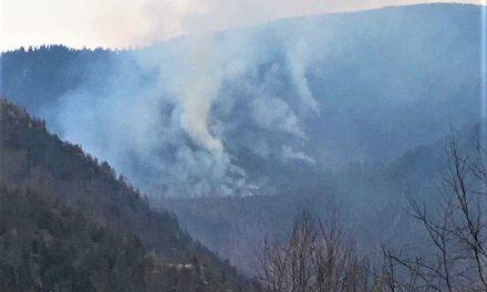Peste 70 de incendii de vegetație uscată la Cluj, într-o singură săptămână  FOTO