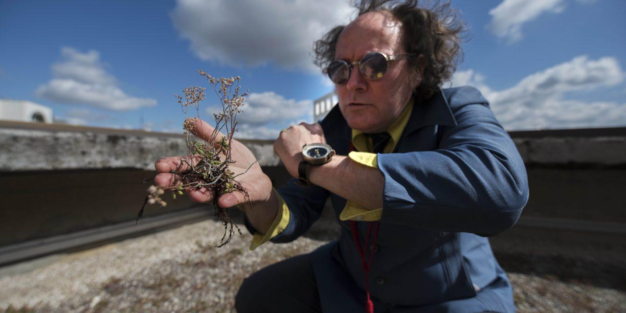 TRANSMISSION CLUJ: Cel ce vorbea cu plantele,  Yann Toma