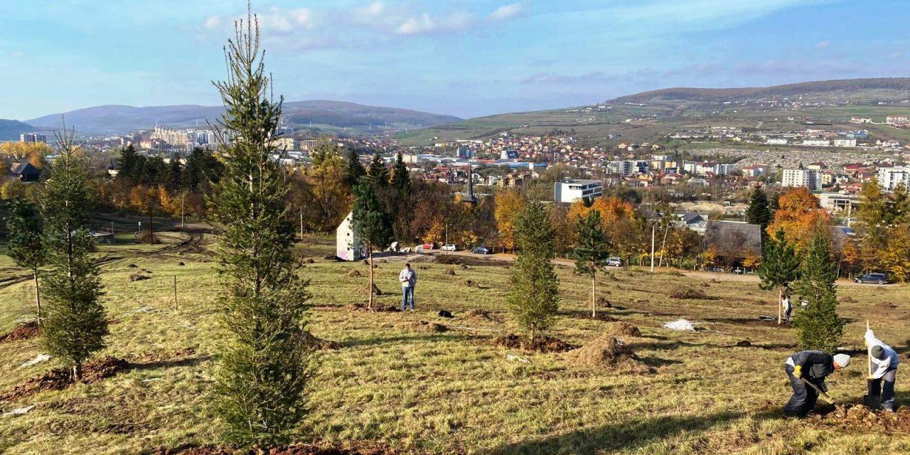 Cluj: Extinderea Parcului Etnografic din Hoia prinde contur